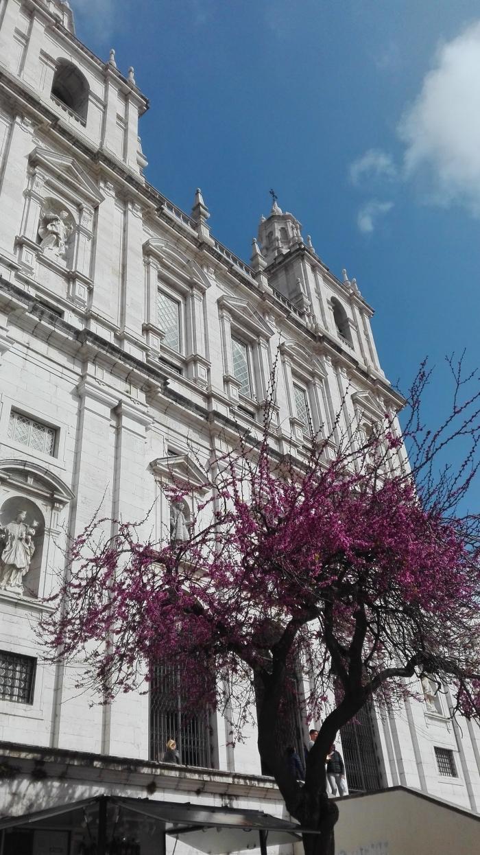 igrejasaovicente